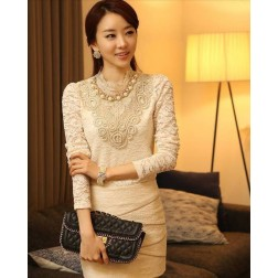 Embroidery Slim Lace Stand Collar Long Sleeves Women's Dress
